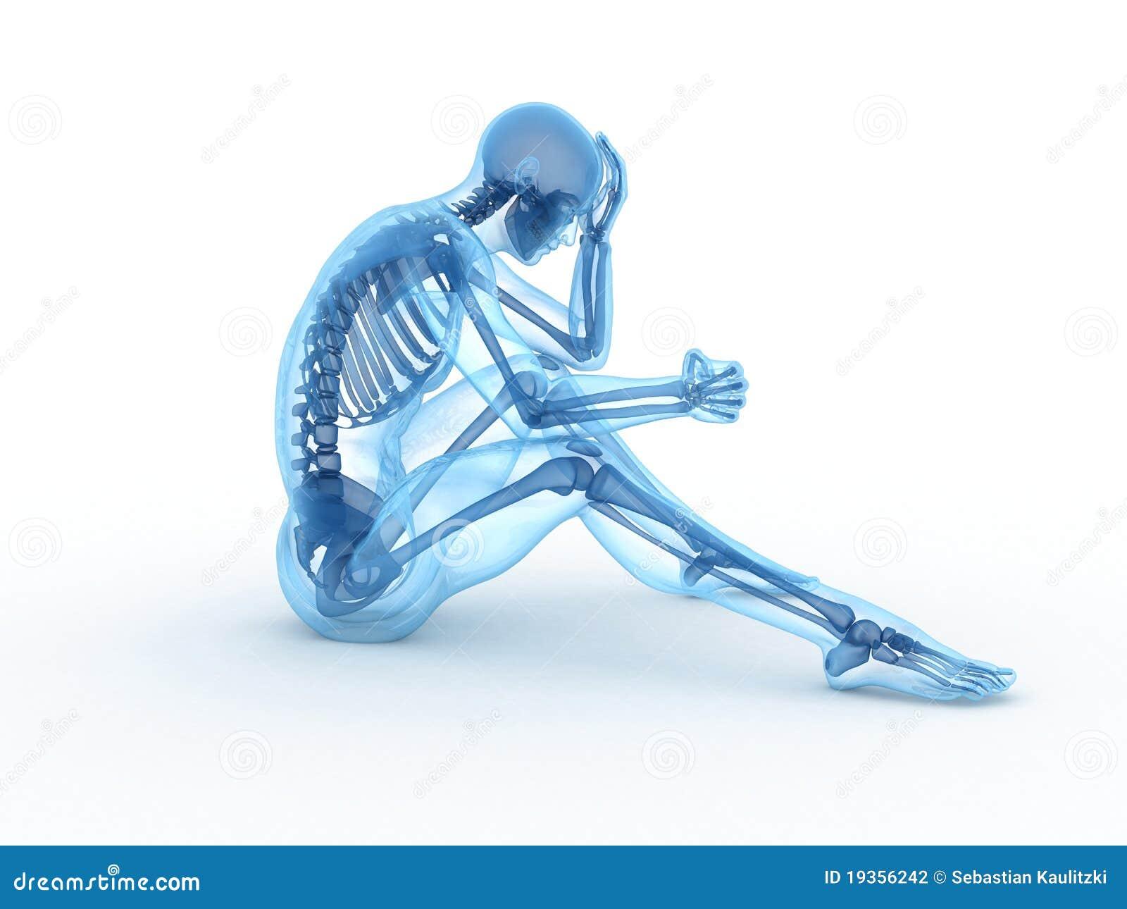 Macho de assento com ossos visíveis