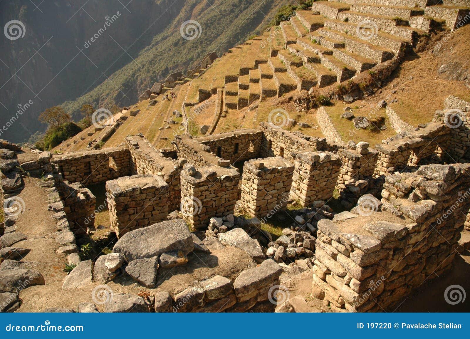 Machu Piccu #20