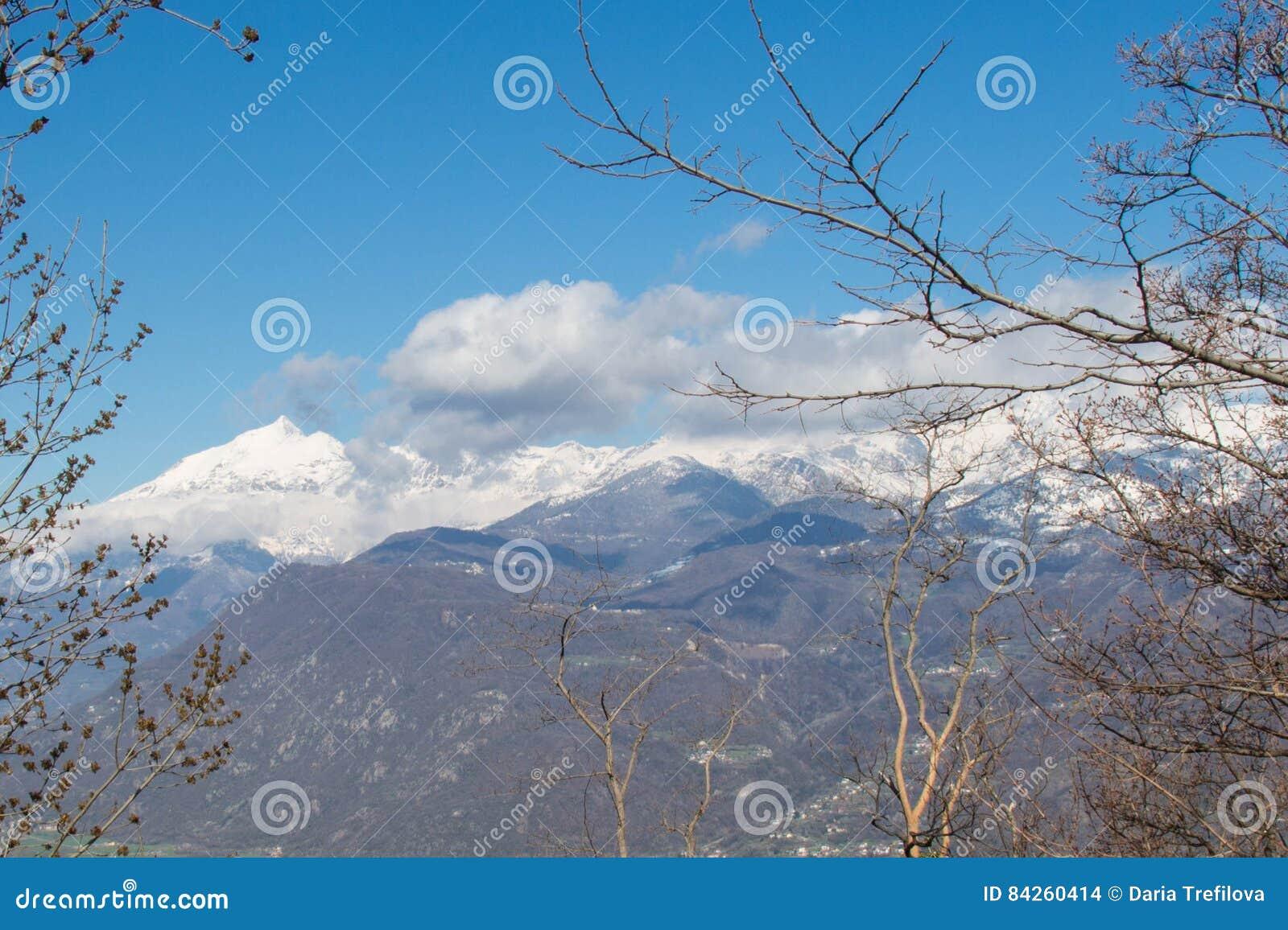 Macizo de la montaña Nevado en Val di Susa a través de ramas piedmont Italia