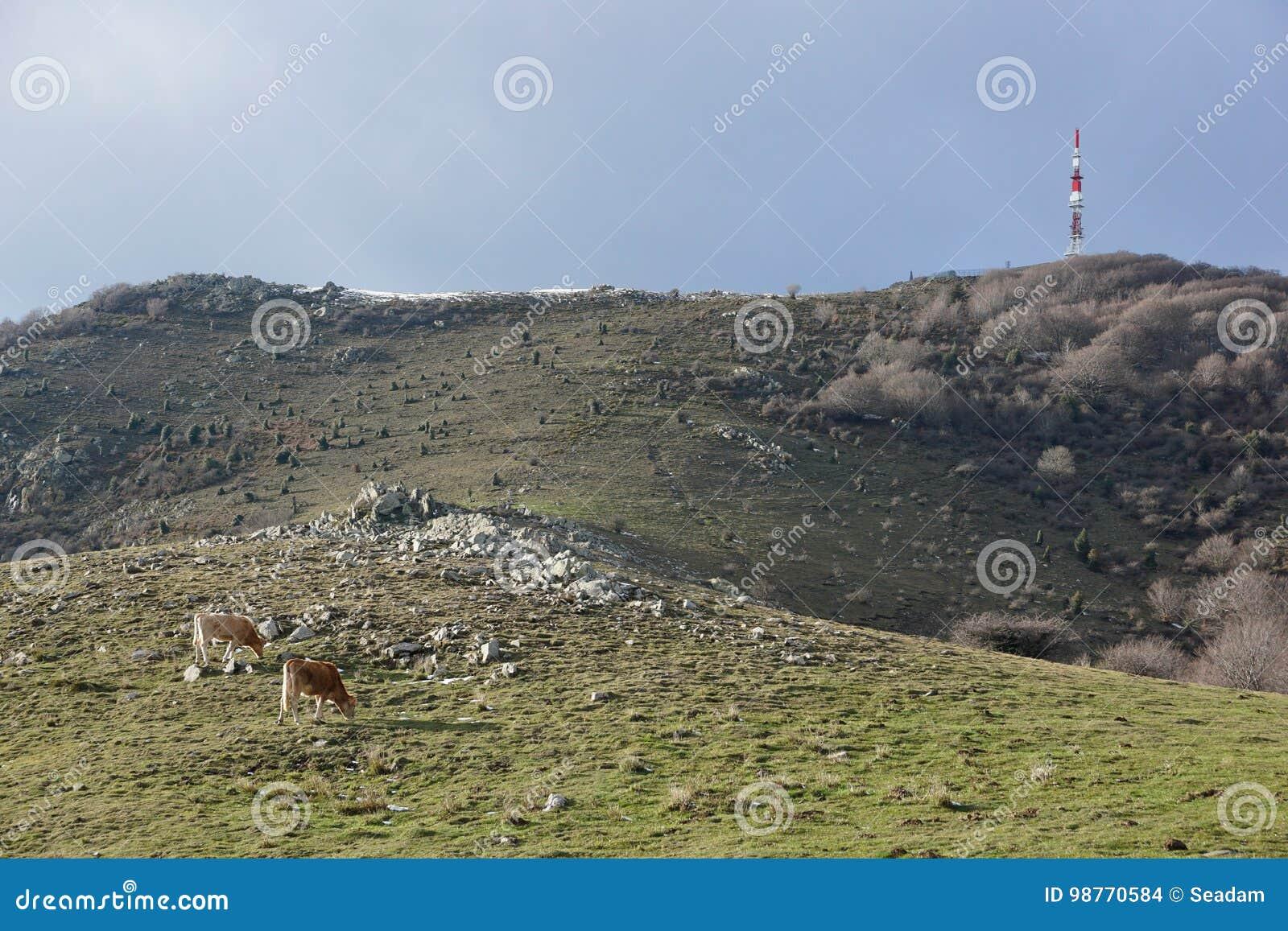 Macizo máximo los Pirineos de Neulos Albera del paisaje