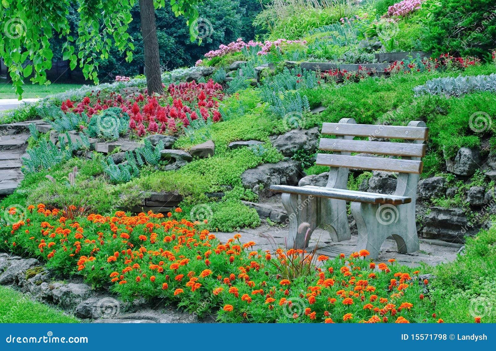 Macizos de flores plantas decorativas en un parque foto for Plantas decorativas hidroponicas