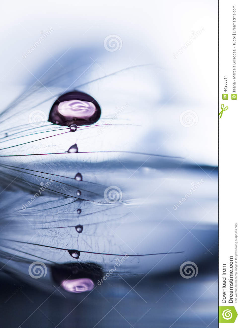 Macro, Abstract Composition With Colorful Water Drops On ...