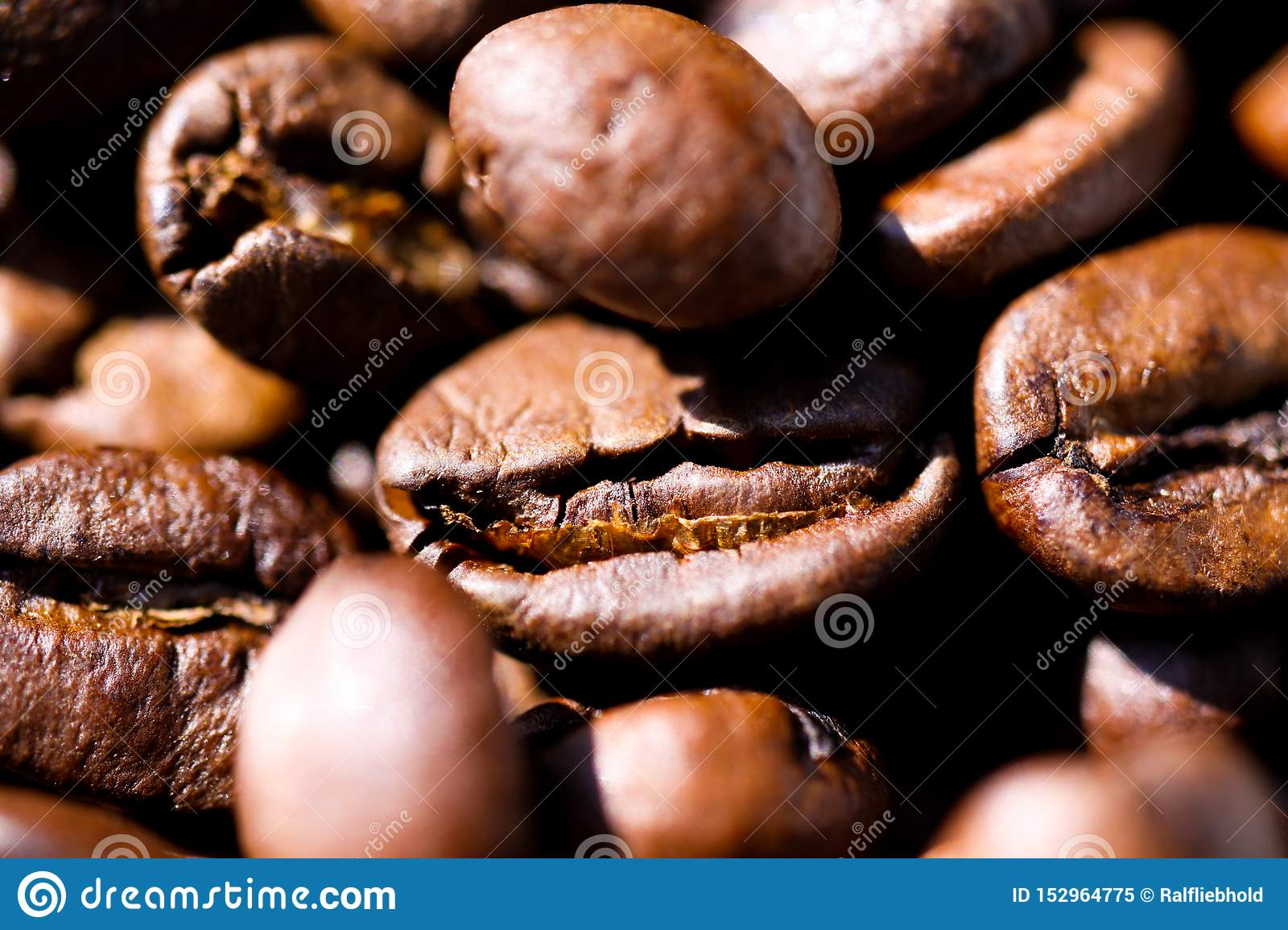 Macro close up of pile of roasted brown coffee beans in natural sunlight showing details of surface