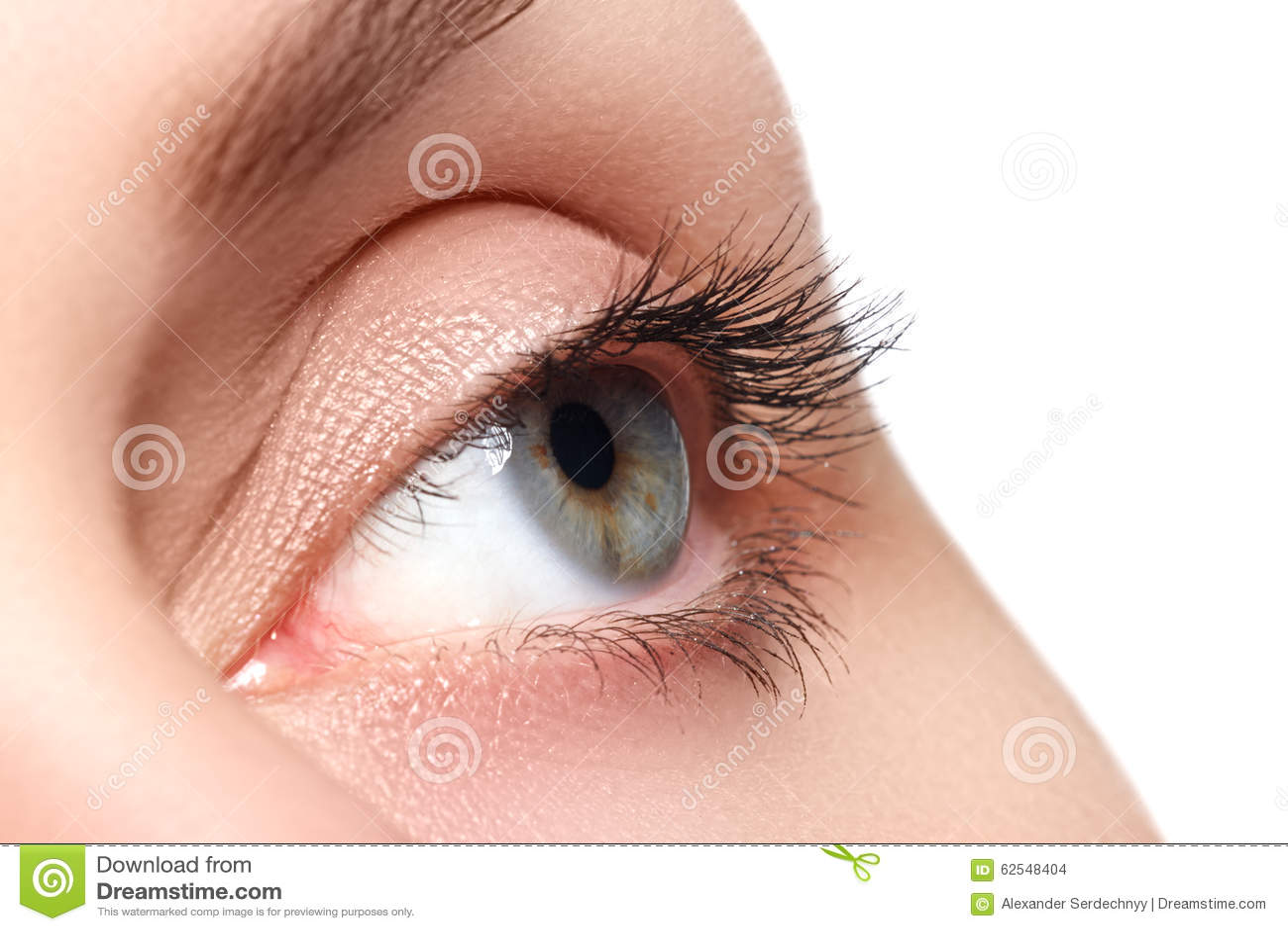 Macro colpo di bello occhio della donna con i cigli estremamente lunghi Vista sexy, sguardo sensuale Occhio femminile con i cigli