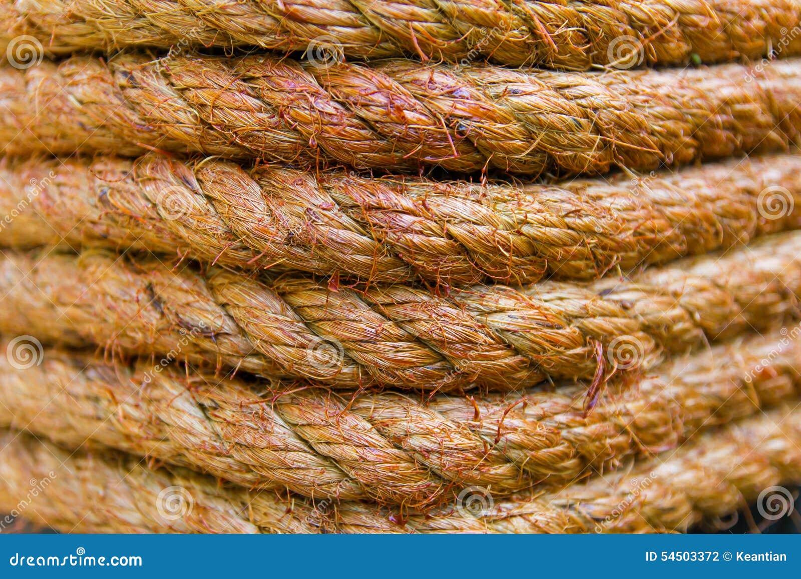 Macro corde de Manille de tache floue