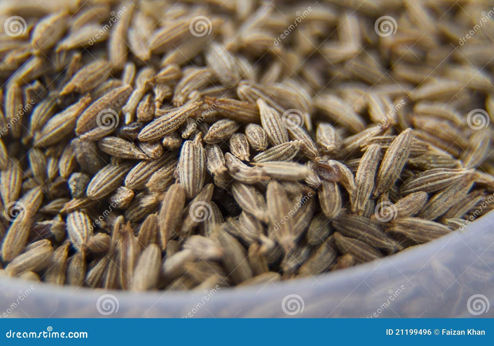 Macro of Cummins Seeds