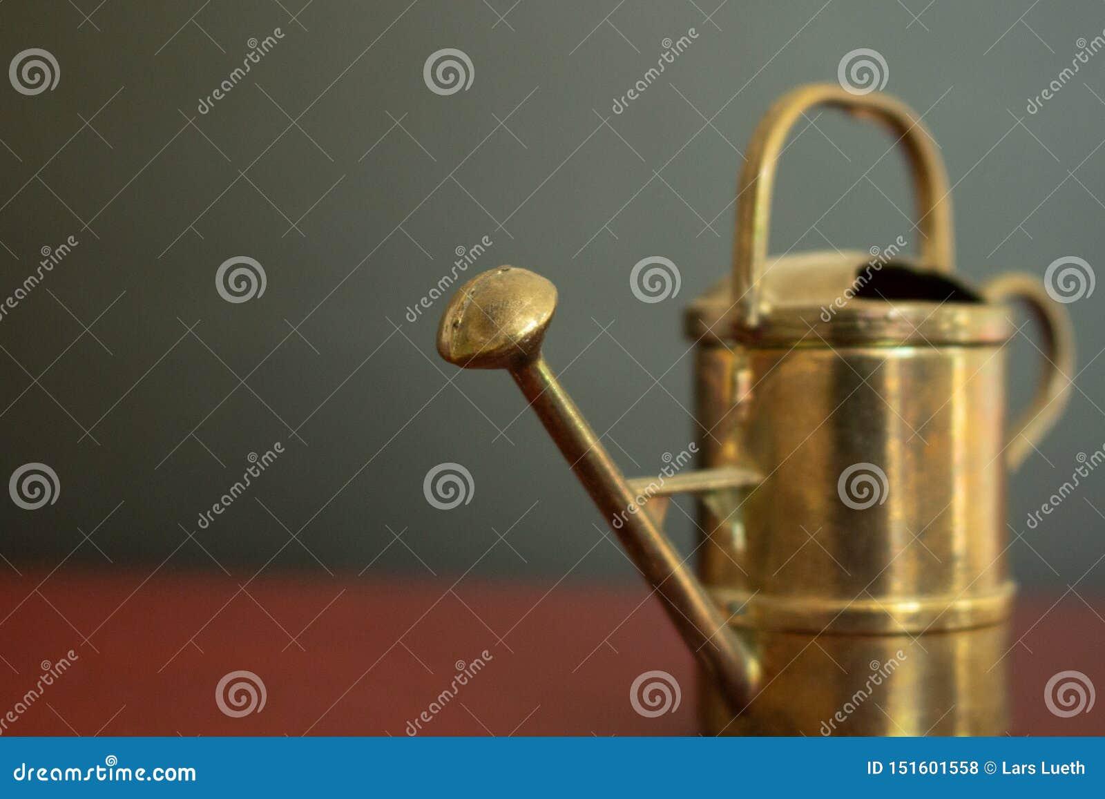 Macro de boîte d arrosage miniature de cru d or devant le fond noir