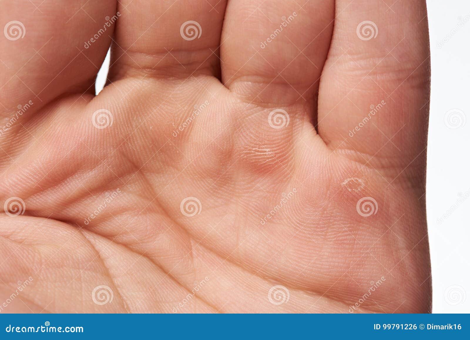 Macro de la mano del trabajador