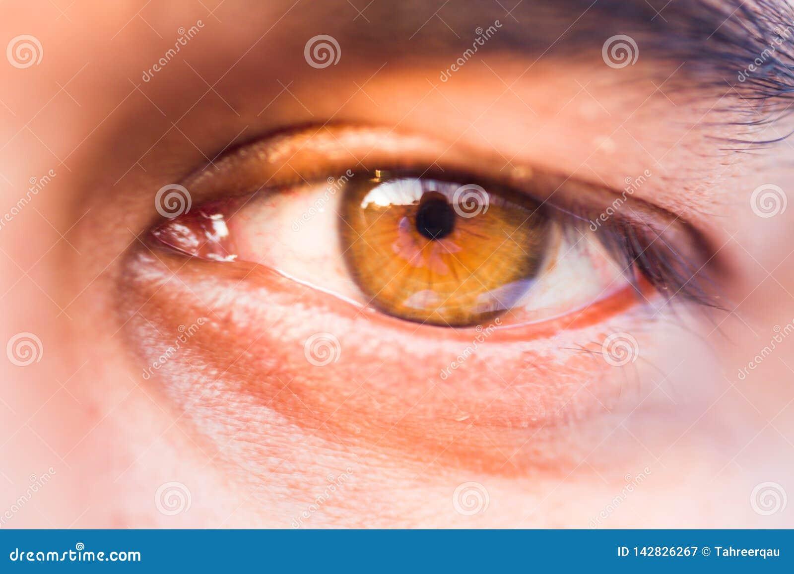 Macro de un ojo humano