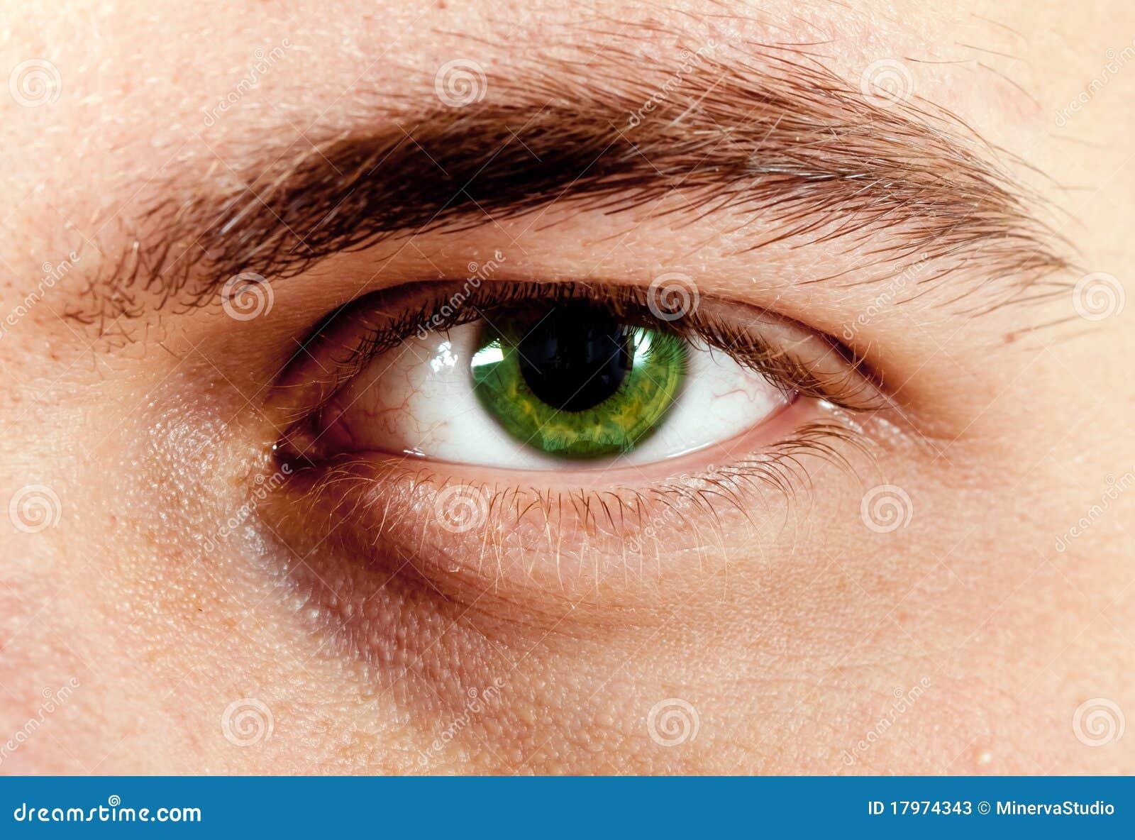 macro-do-olho-do-homem-verde-17974343.jp