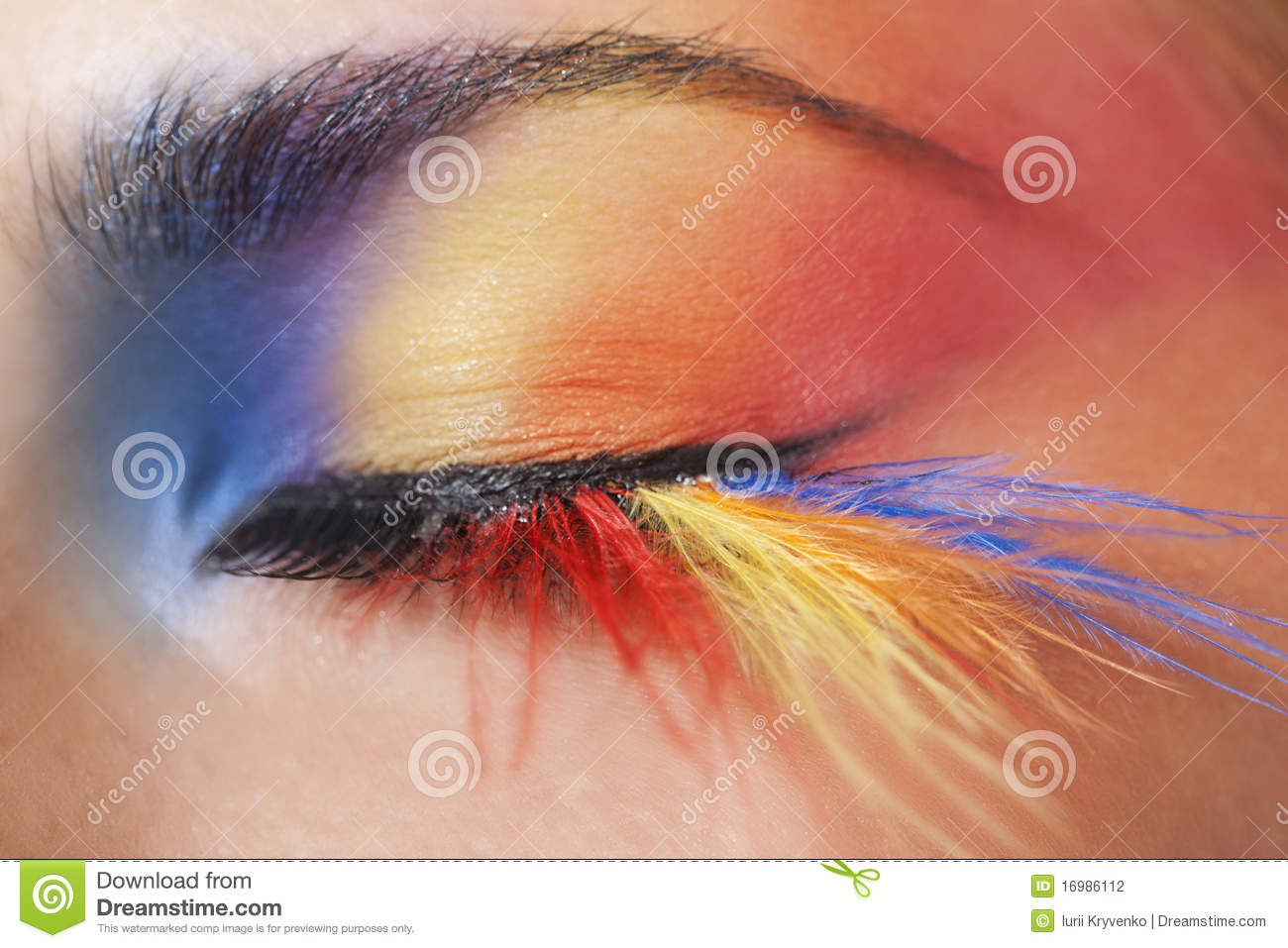 bbb22c10743 Macro eye of a woman with bright colourful eyeshadow with long feather  false eyelashes