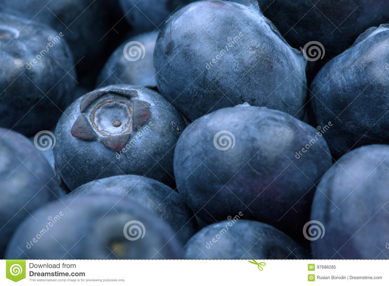 Macro photo of organic and sweet blueberries as a background. Healthful and fresh berries for desserts or smoothies.
