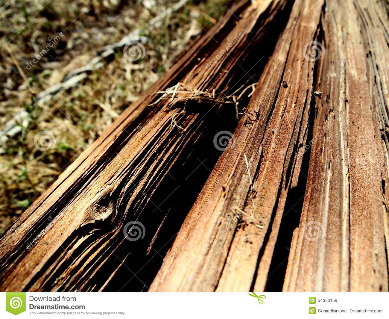 Macro photograph of cracked wooden pole stock photo