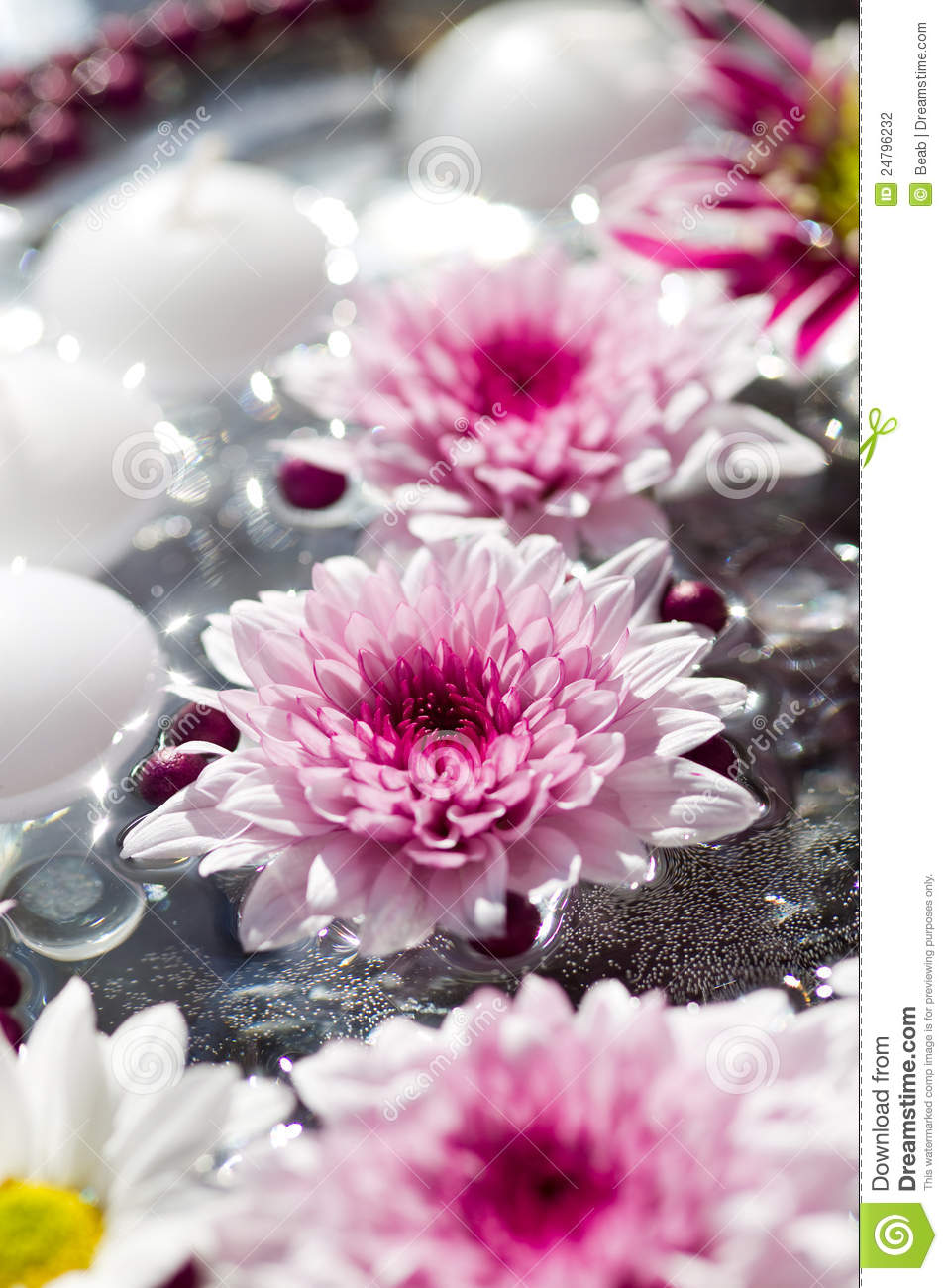 Macro Shot Of Flower Table Decorations Stock Photography - Image ...