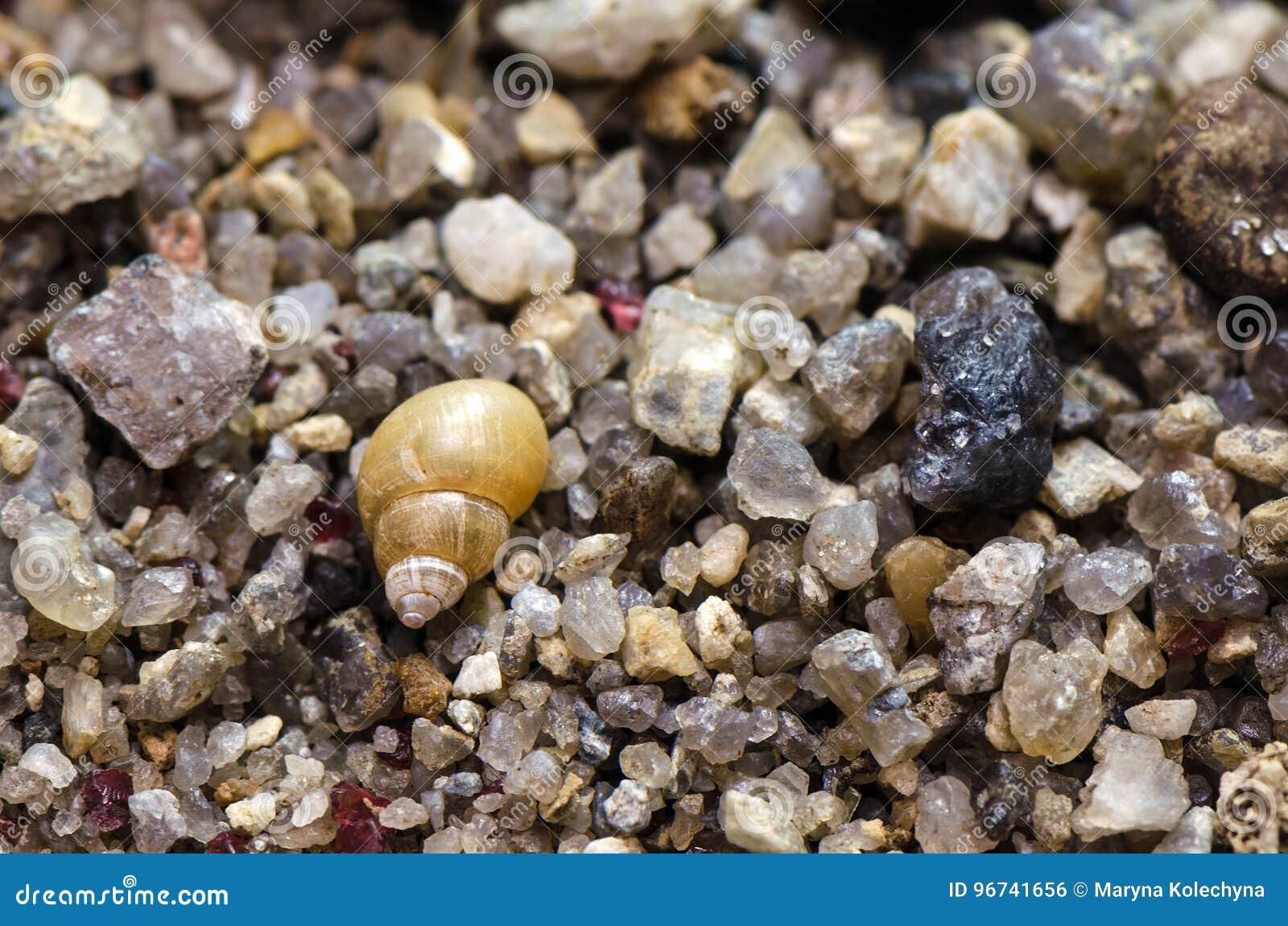 Macro shot of sand at the beach.