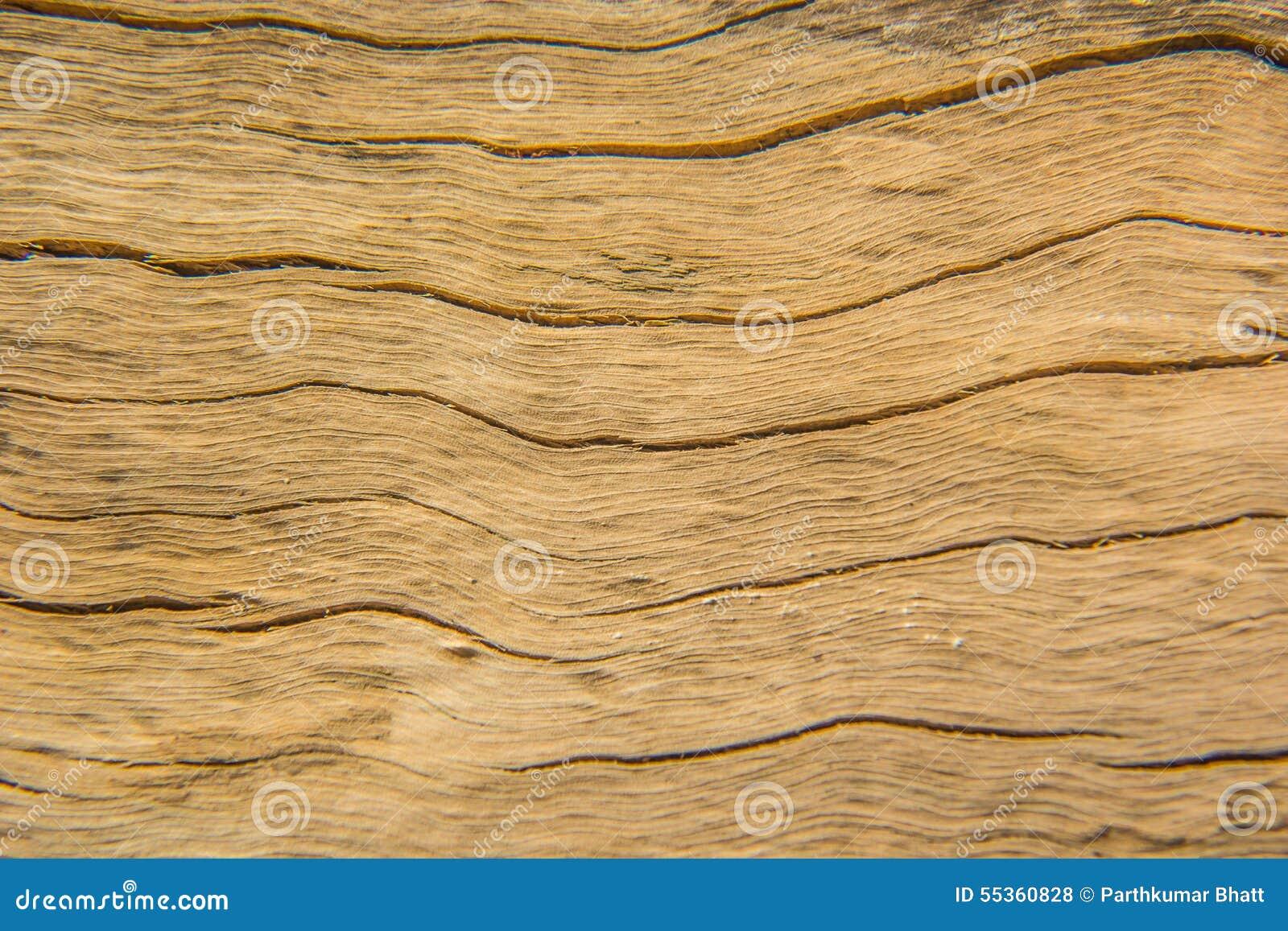 Macro struttura di legno - 4