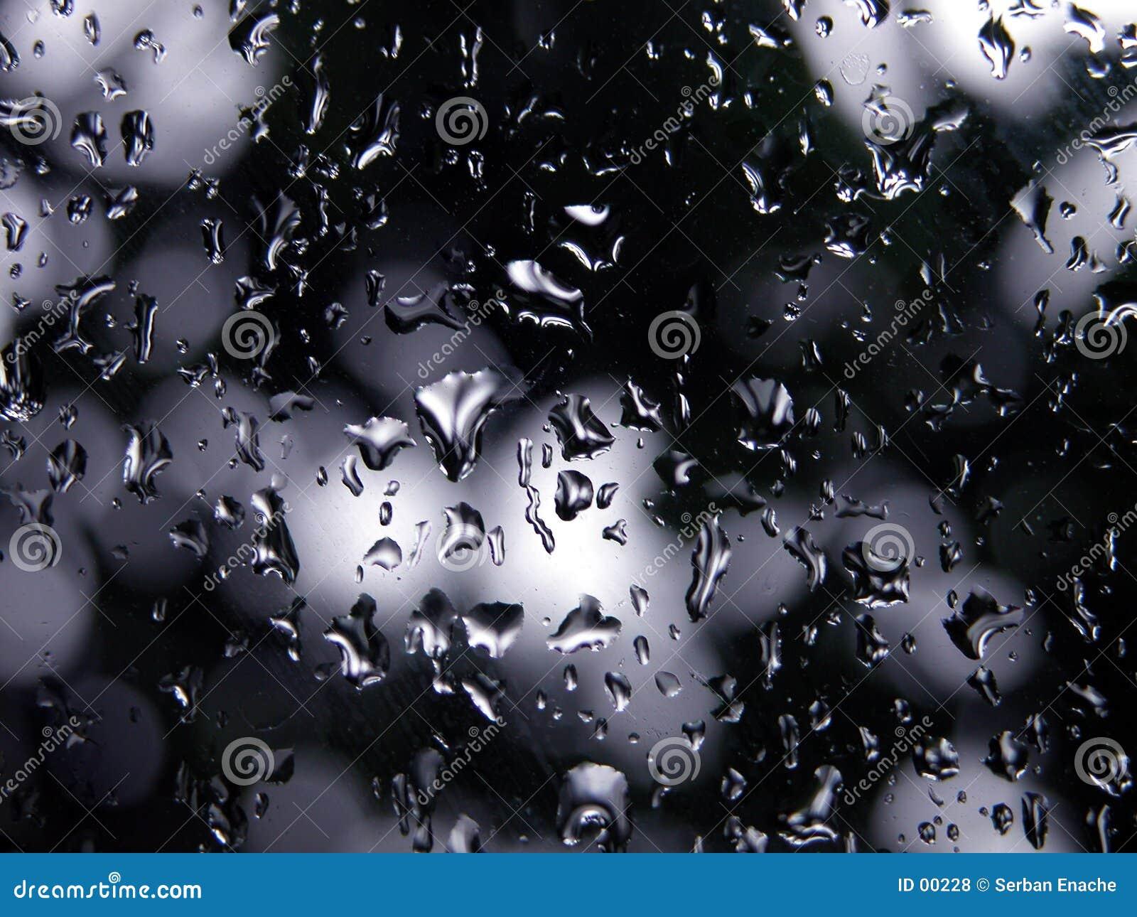 Macro - umidade no foco