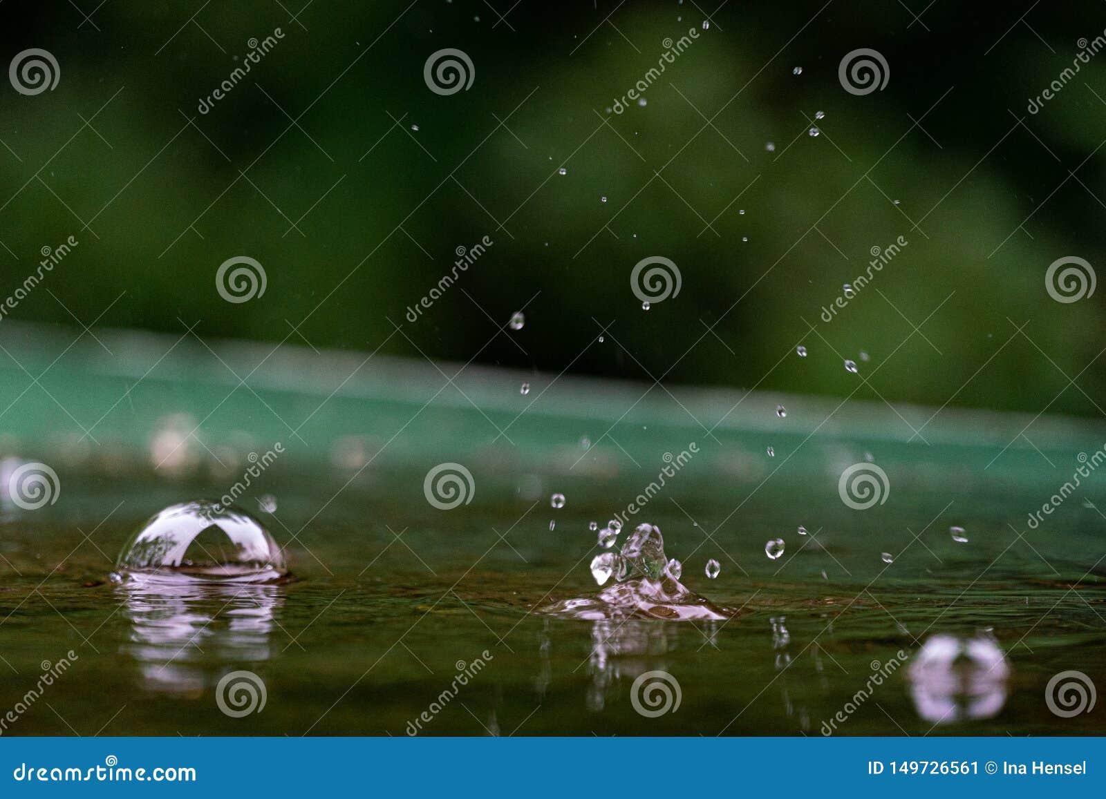 Macro van regendruppels en waterbellen