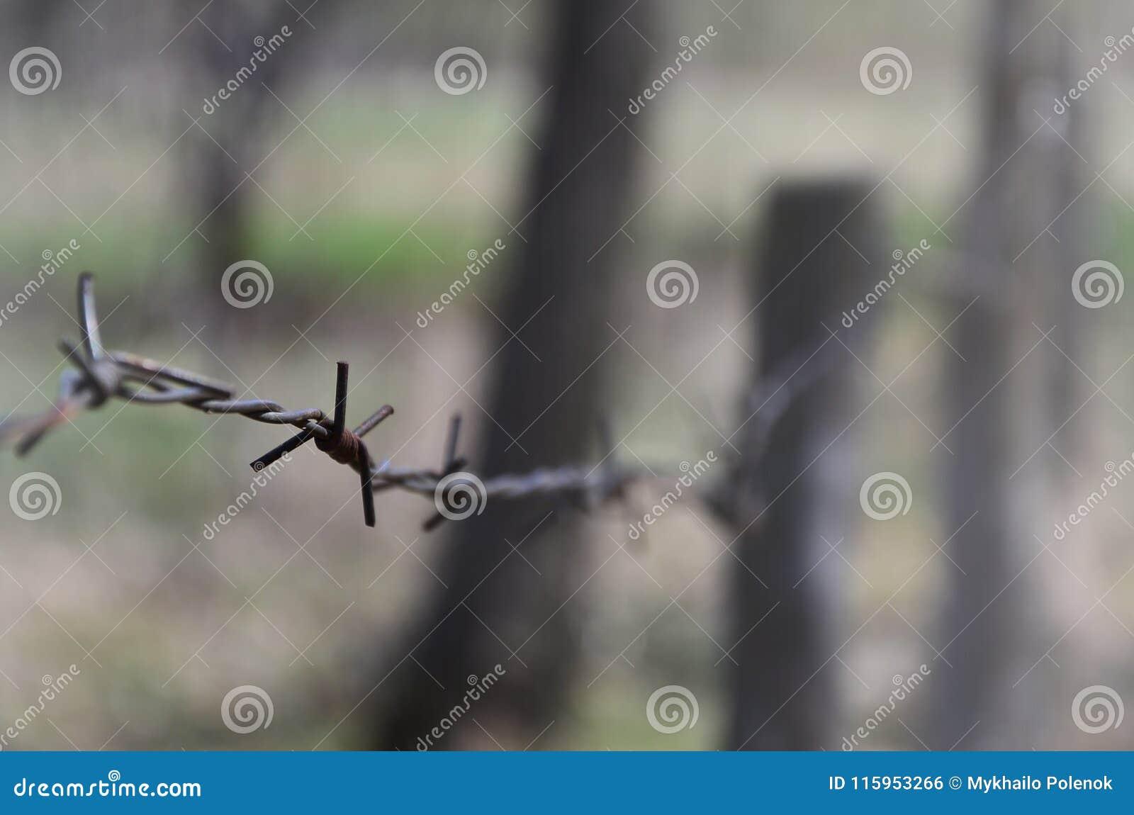Macroschot van een element van oud en roestig prikkeldraad met een vage achtergrond Het fragment van een dorpsomheining van een l