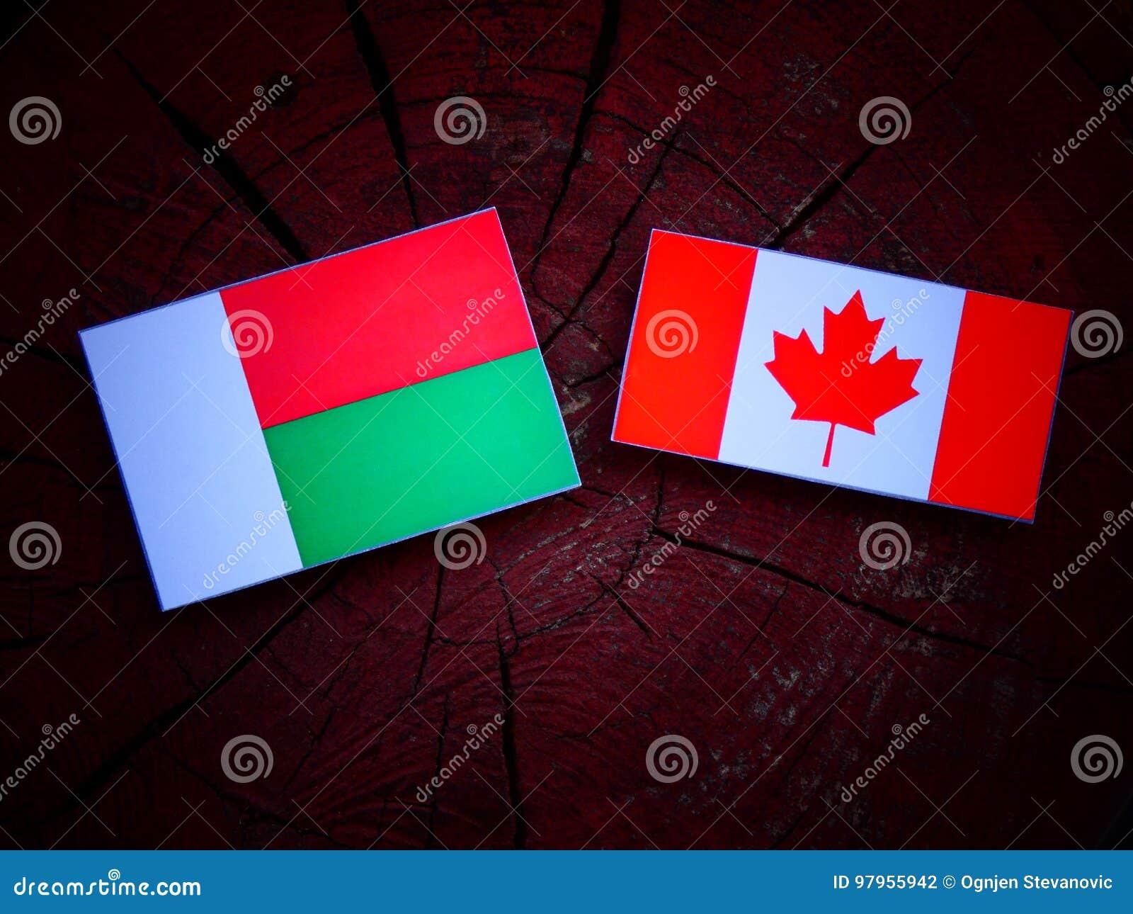 Madagascar flaga z kanadyjczyk flaga na drzewnym fiszorku odizolowywającym