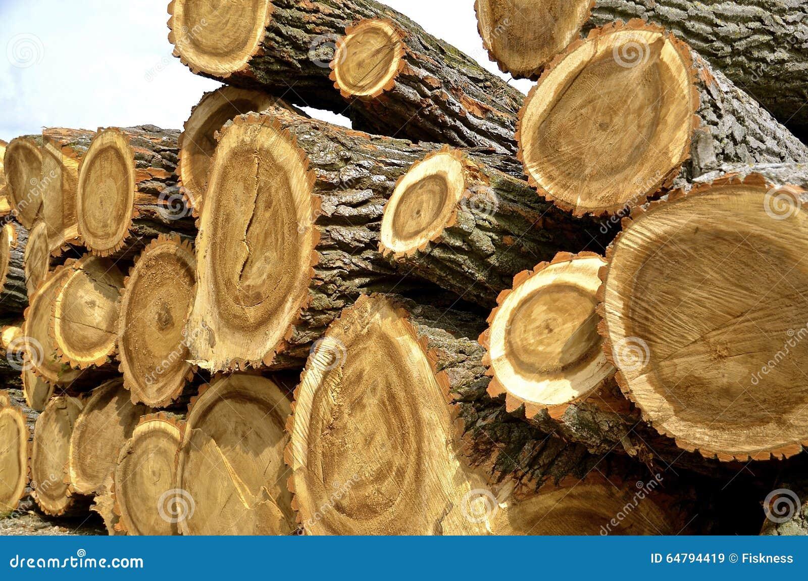 A madeira enorme entra uma pilha