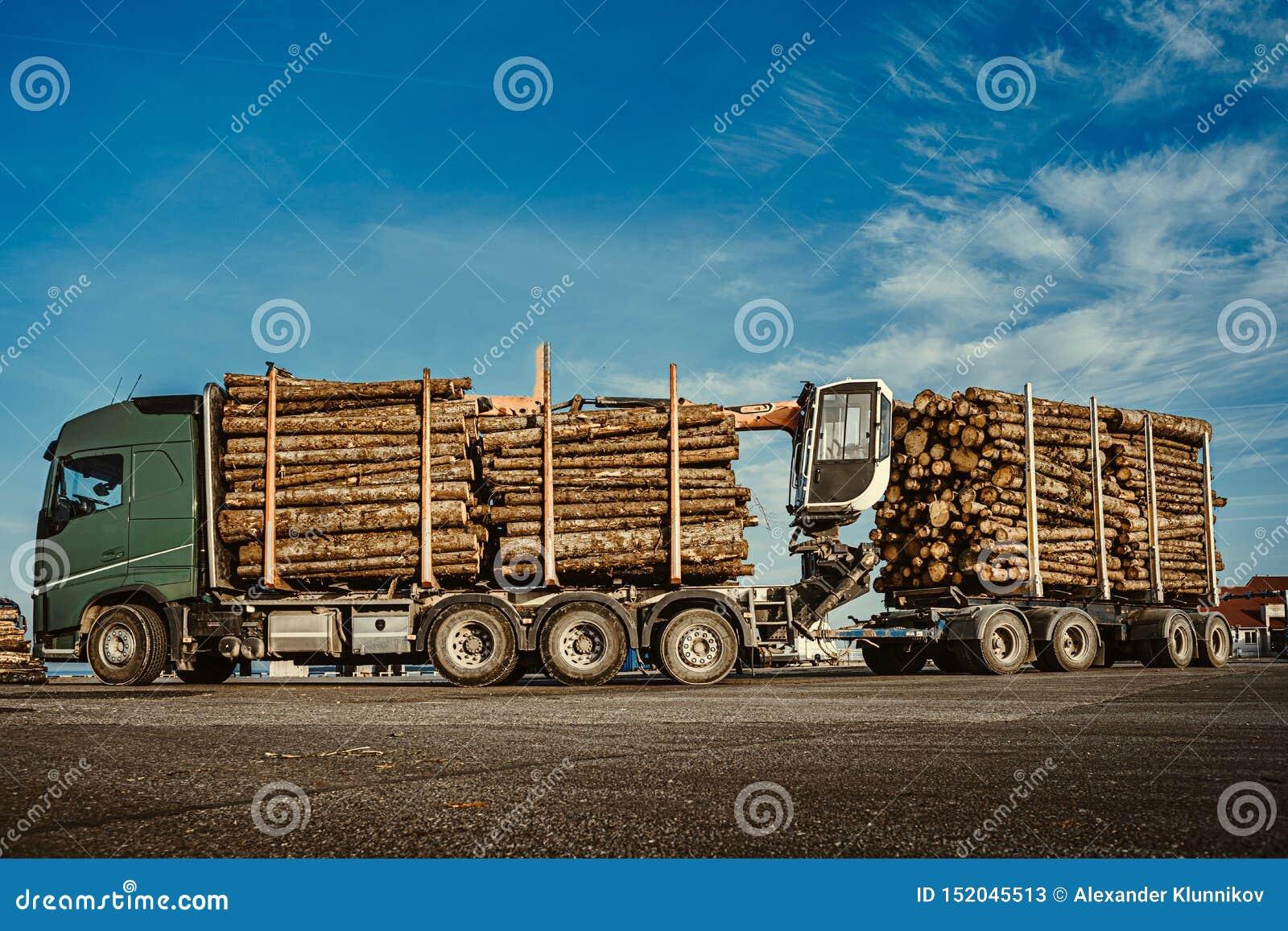 Madeira para trituração levando do caminhão verde ao navio de carga no porto Adultos novos Fim acima Copie o espa?o