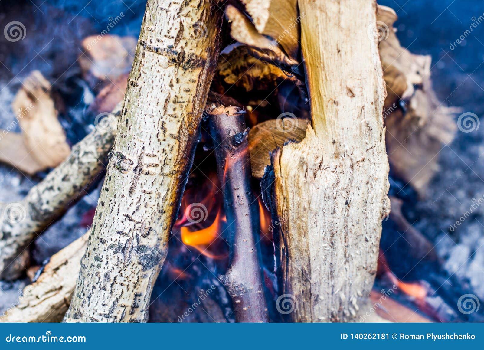 Madera ardiente en el fuego