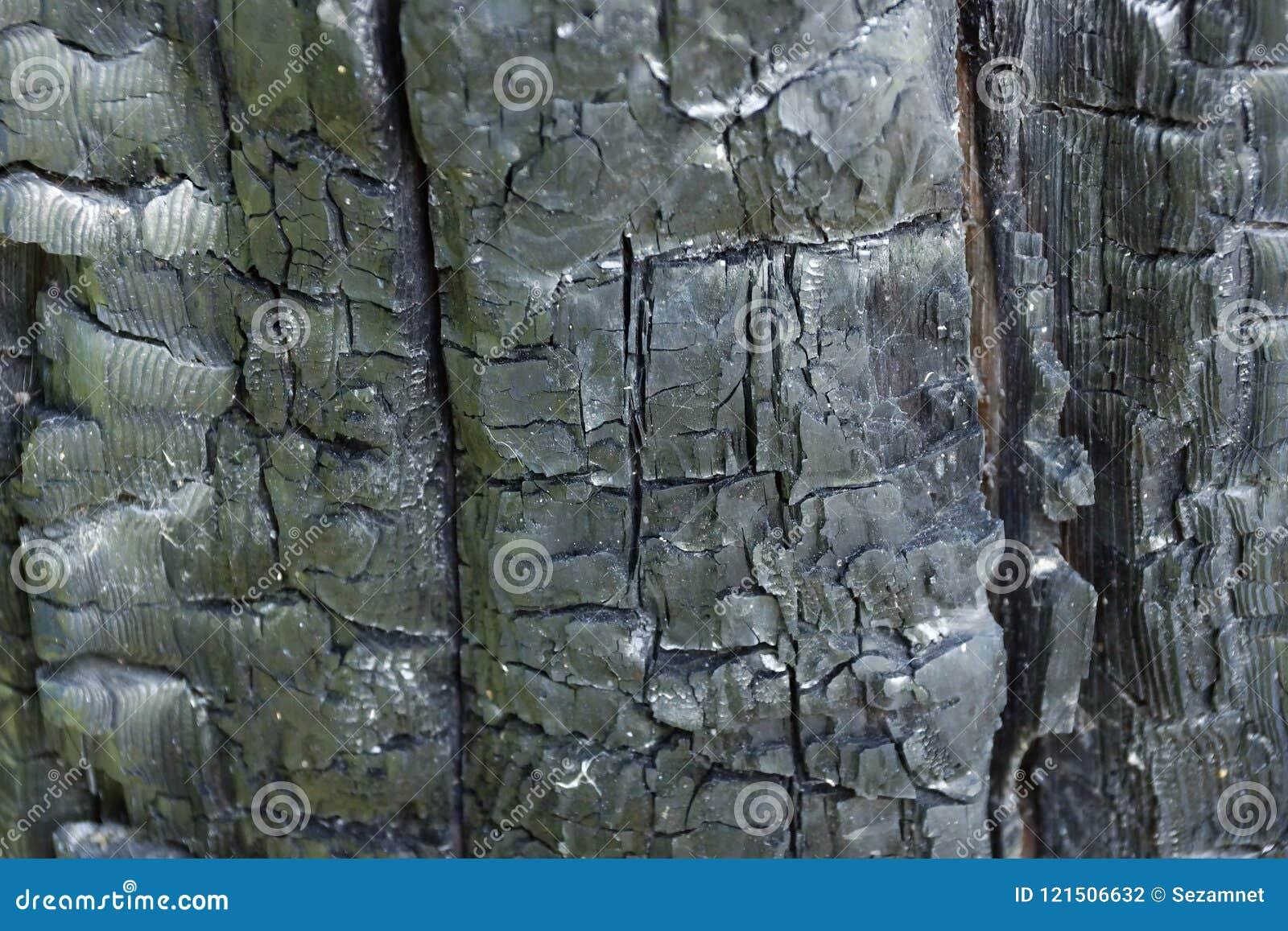 Madera carbonizada del fondo de la textura del fuego