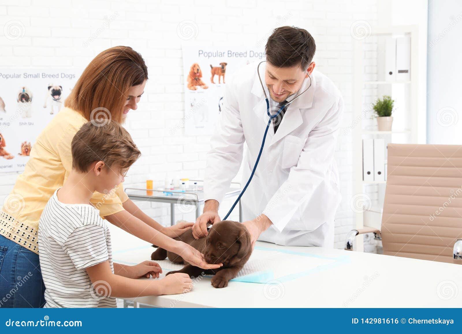 Madre e hijo con su veterinario que visita del animal doméstico en clínica
