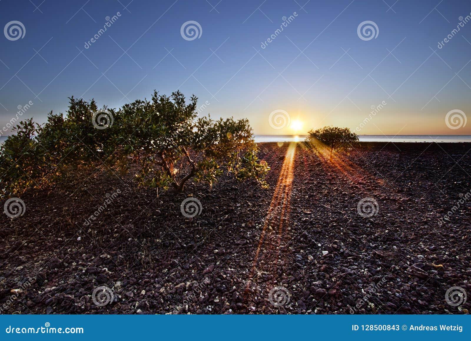 Madrugada de la playa de Scarbourough en la salida del sol