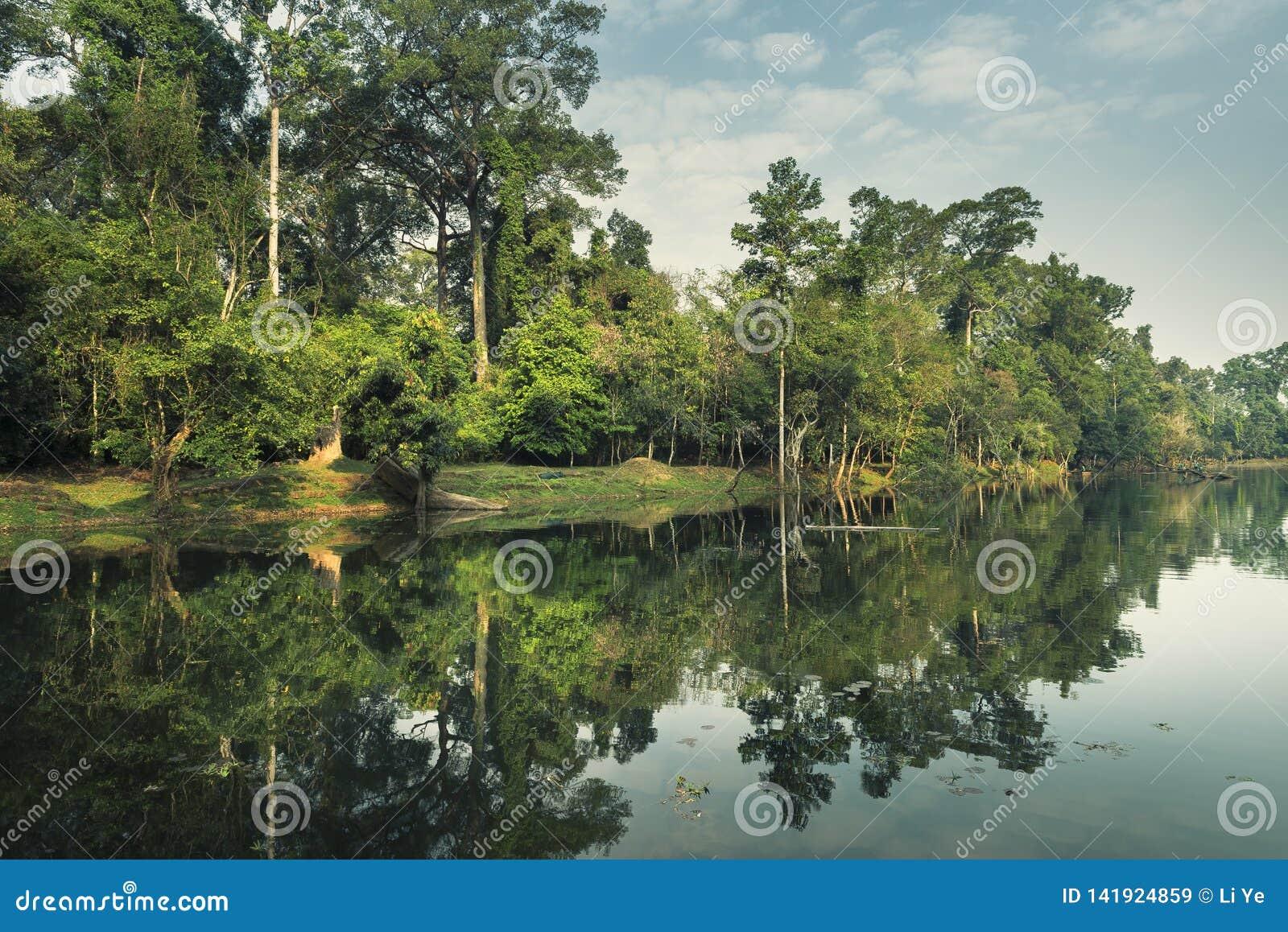Madrugada en el ¼ ŒCambodia de Angkor Watï