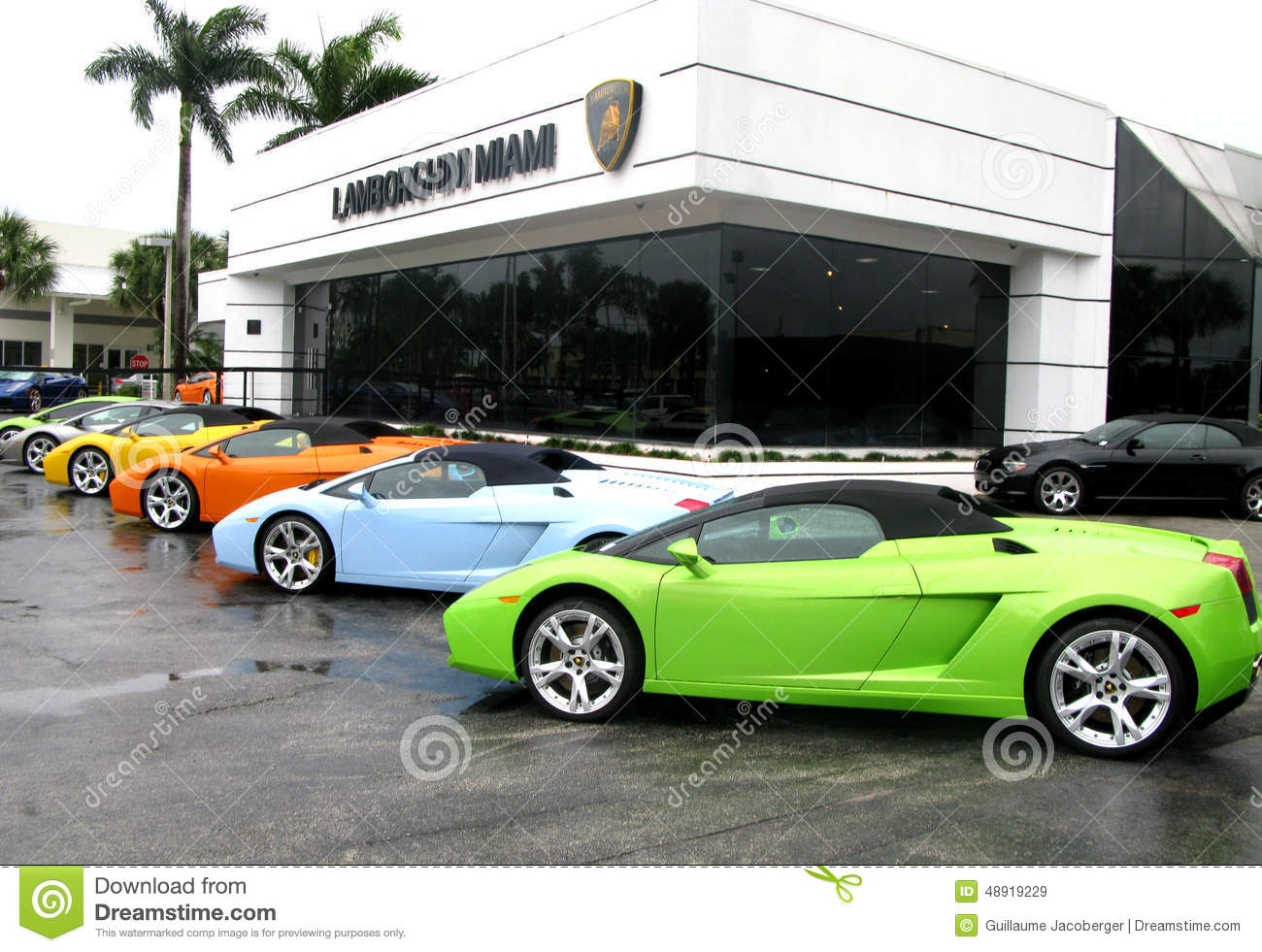 magasin de lamborghini miami image stock ditorial image 48919229. Black Bedroom Furniture Sets. Home Design Ideas
