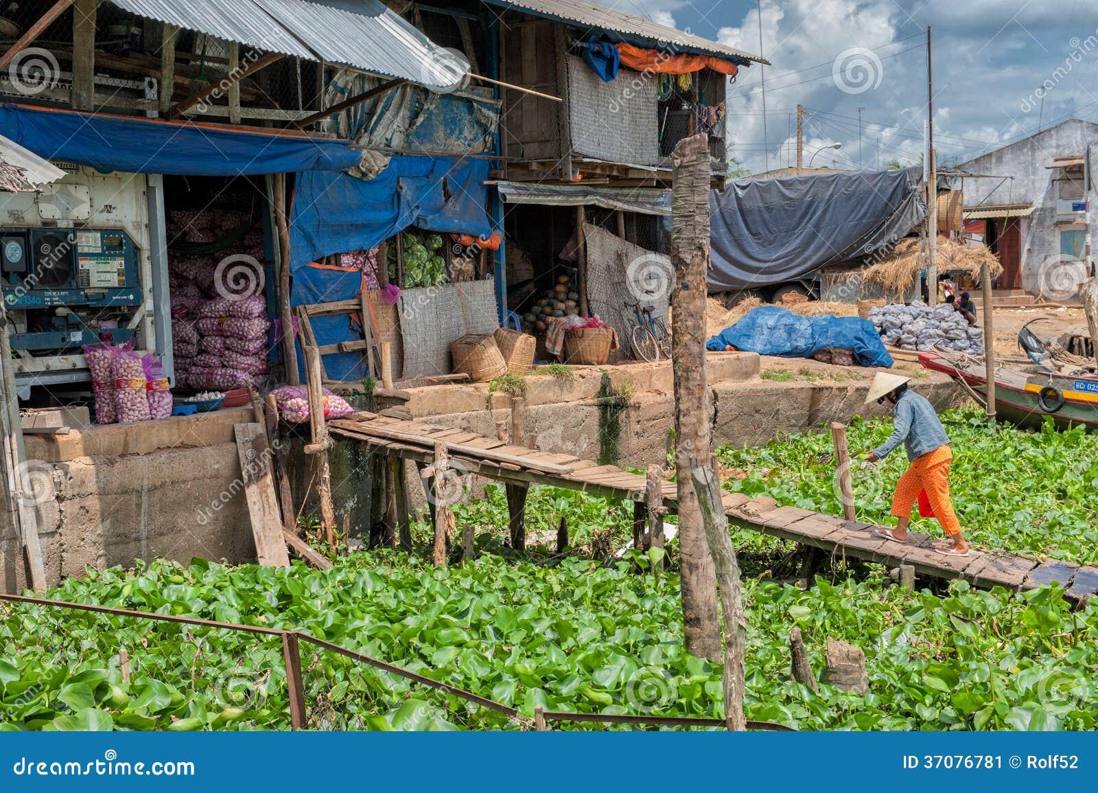 Download Magazyn w Mekong delcie zdjęcie editorial. Obraz złożonej z krajobraz - 37076781
