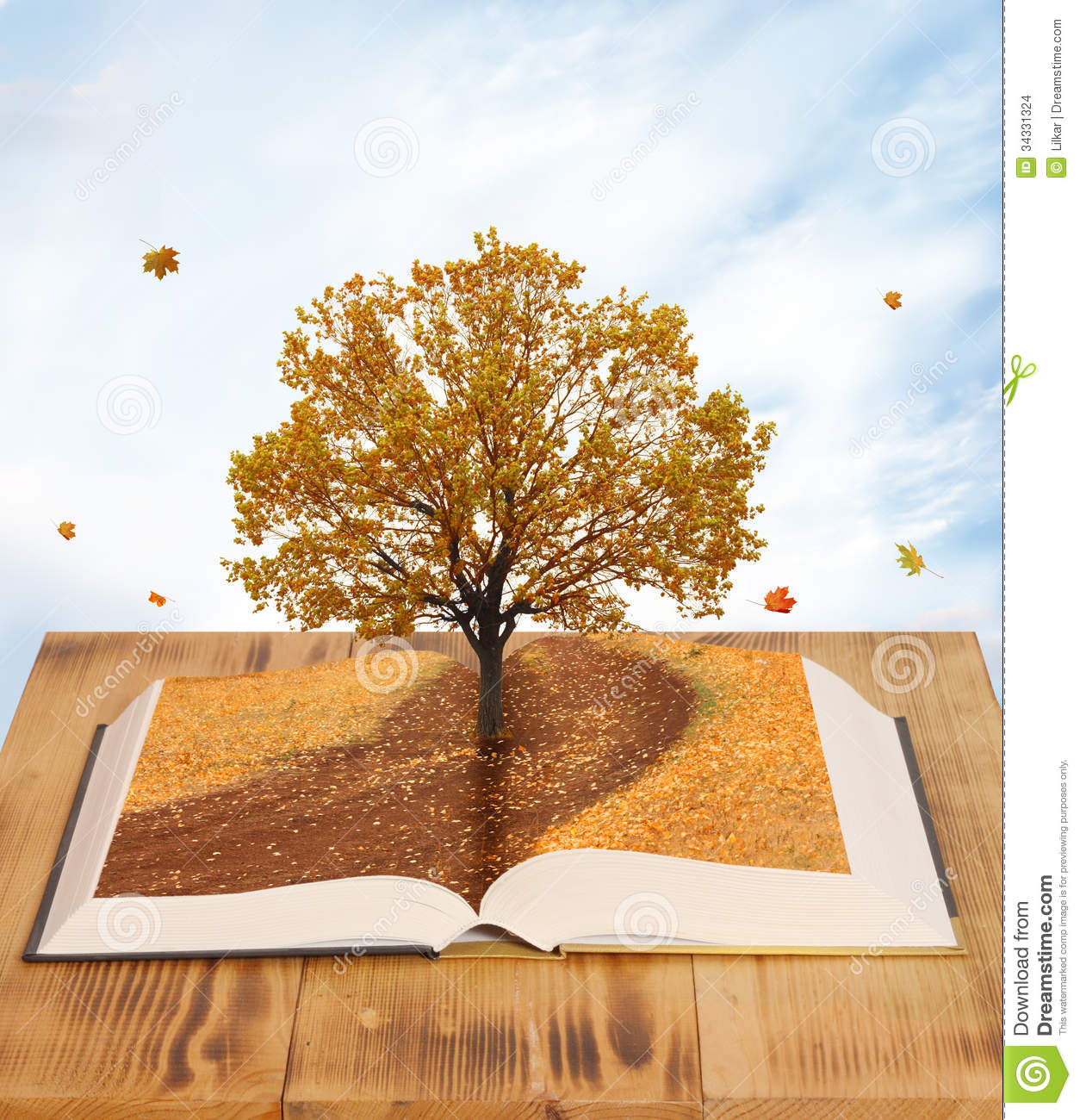 Magic Book Stock Photo Image Of Page Book Ecological
