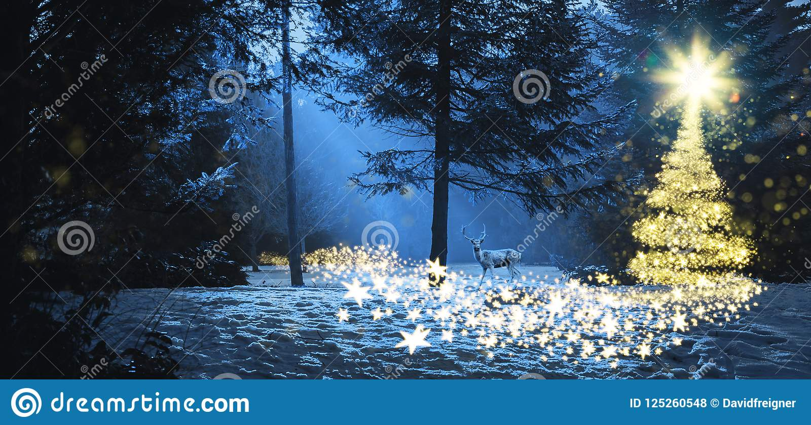 Christmas In The Woods.Magic Christmas Scene In The Woods With A Deer Stock Photo