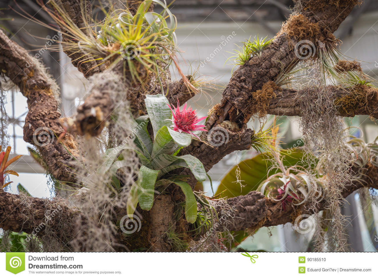 Magic floral garden stock photo. Image of green, painting - 90185510