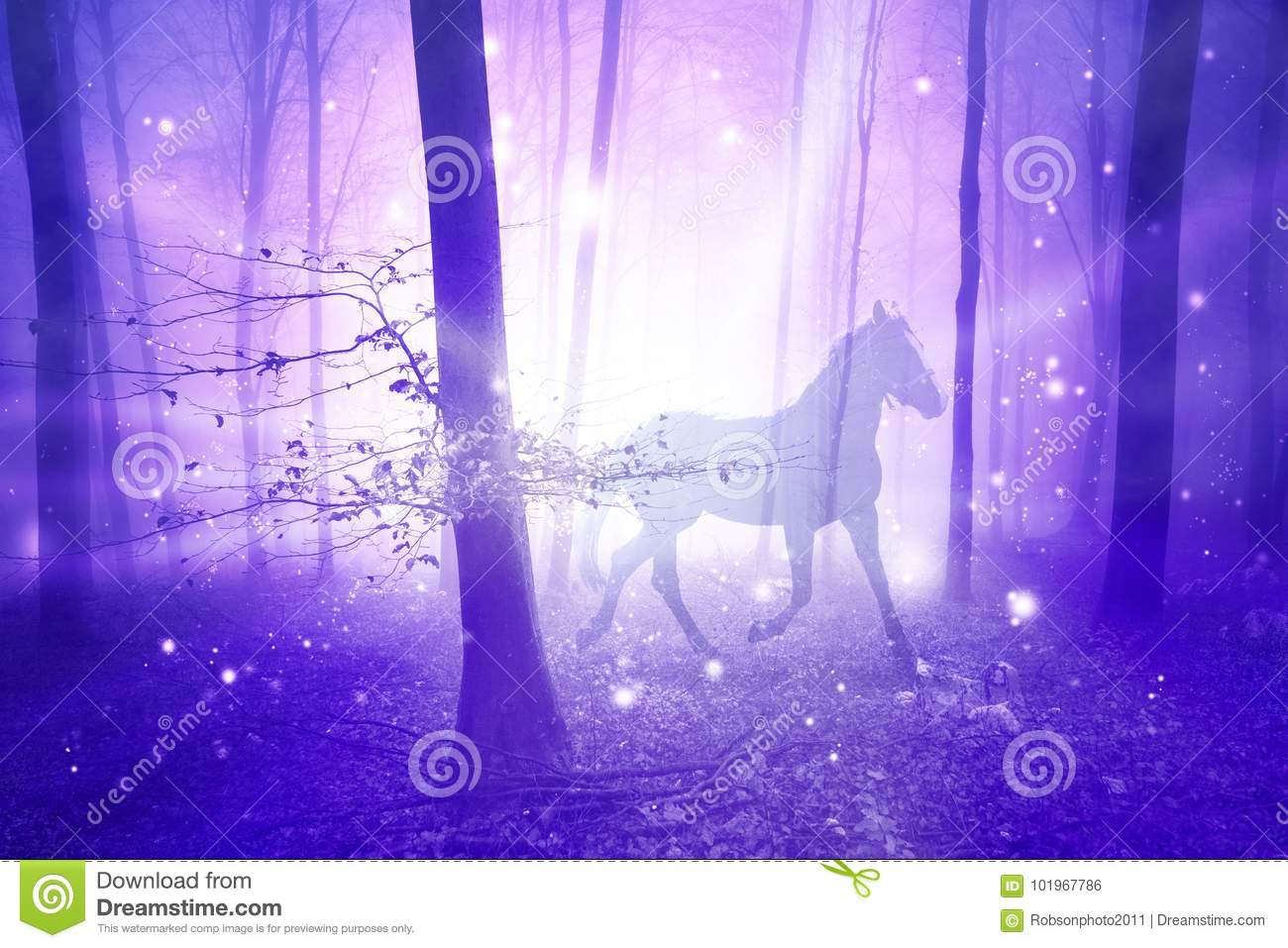 Magic Forest With Horse Stock Photo Image Of Night 101967786
