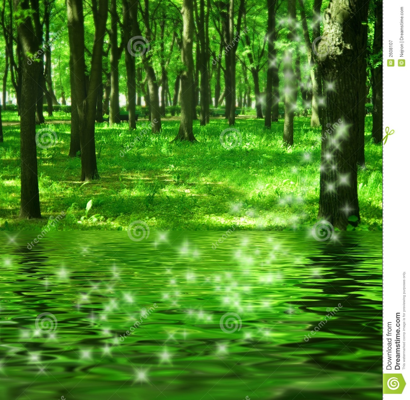 Magic Forest Near The River Stock Image Image Of Nature