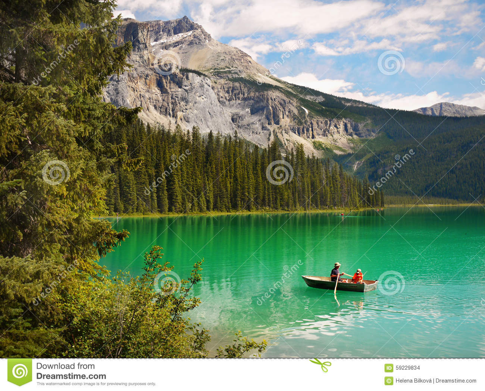 Magic Green Colours of Landscape