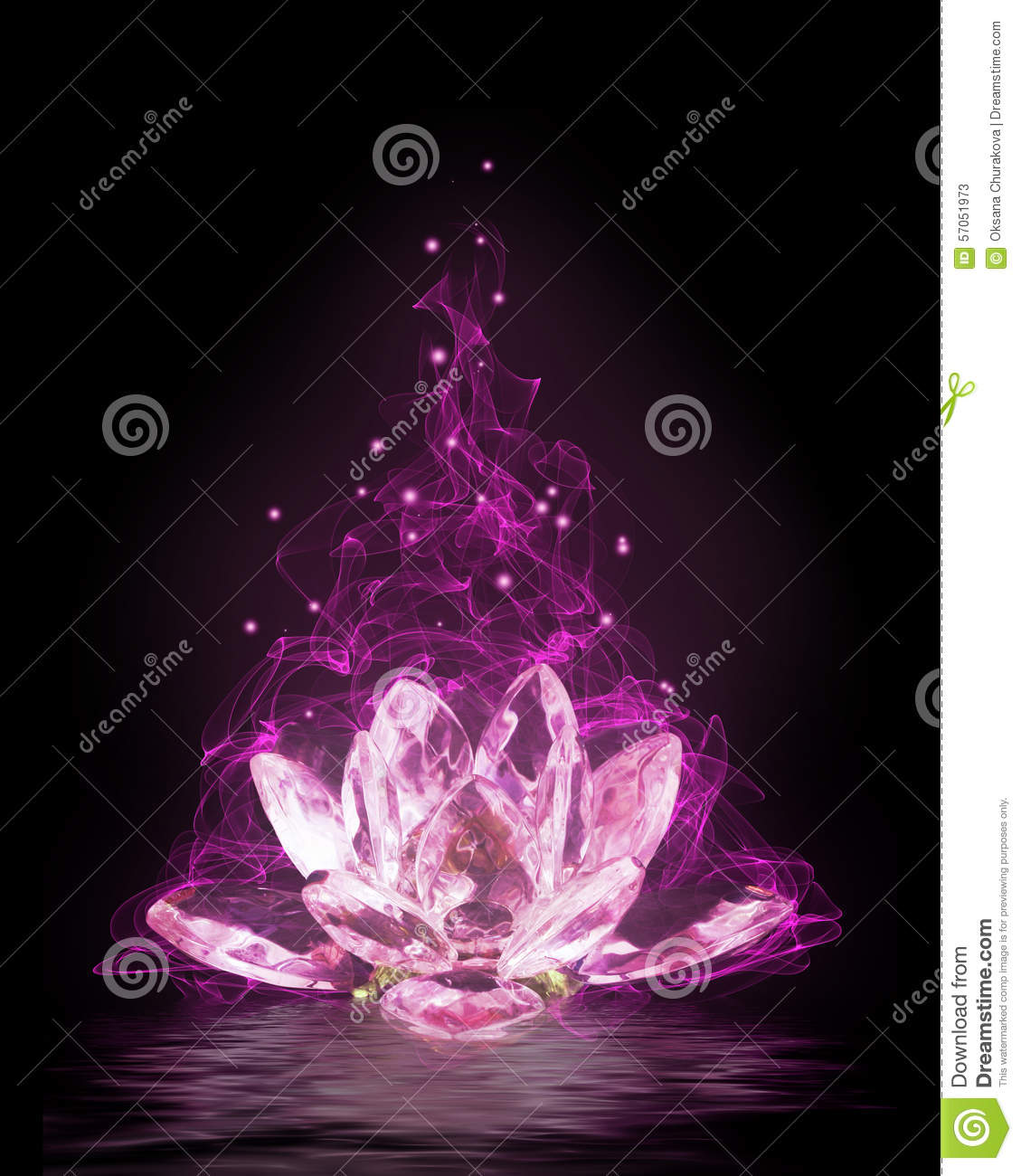 Magic Lotus Flower Stock Image Image Of Glass Mystery 57051973