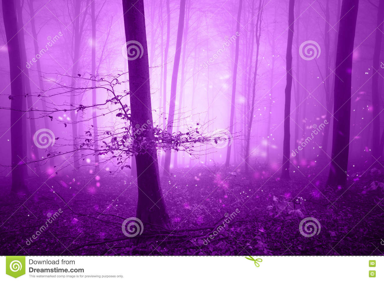 Magic pink forest fairytale with fireflies