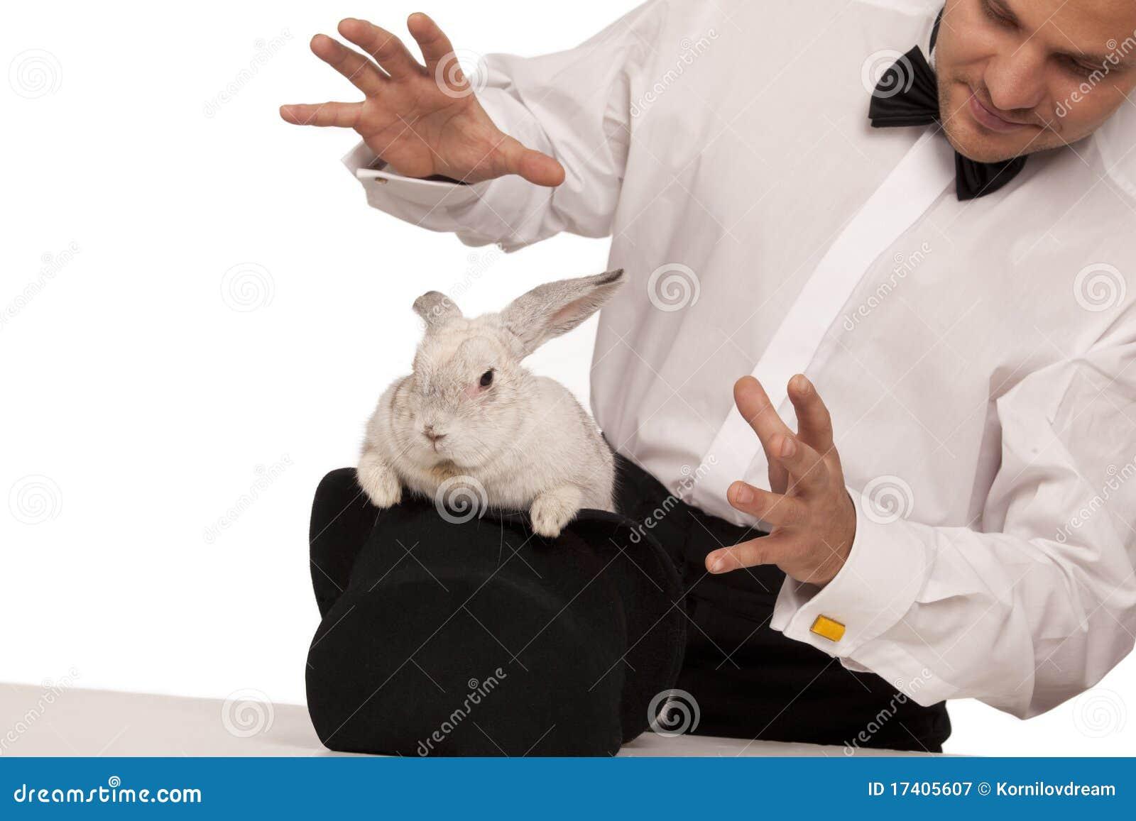 Magician Rabbit | www.imgkid.com - The Image Kid Has It!