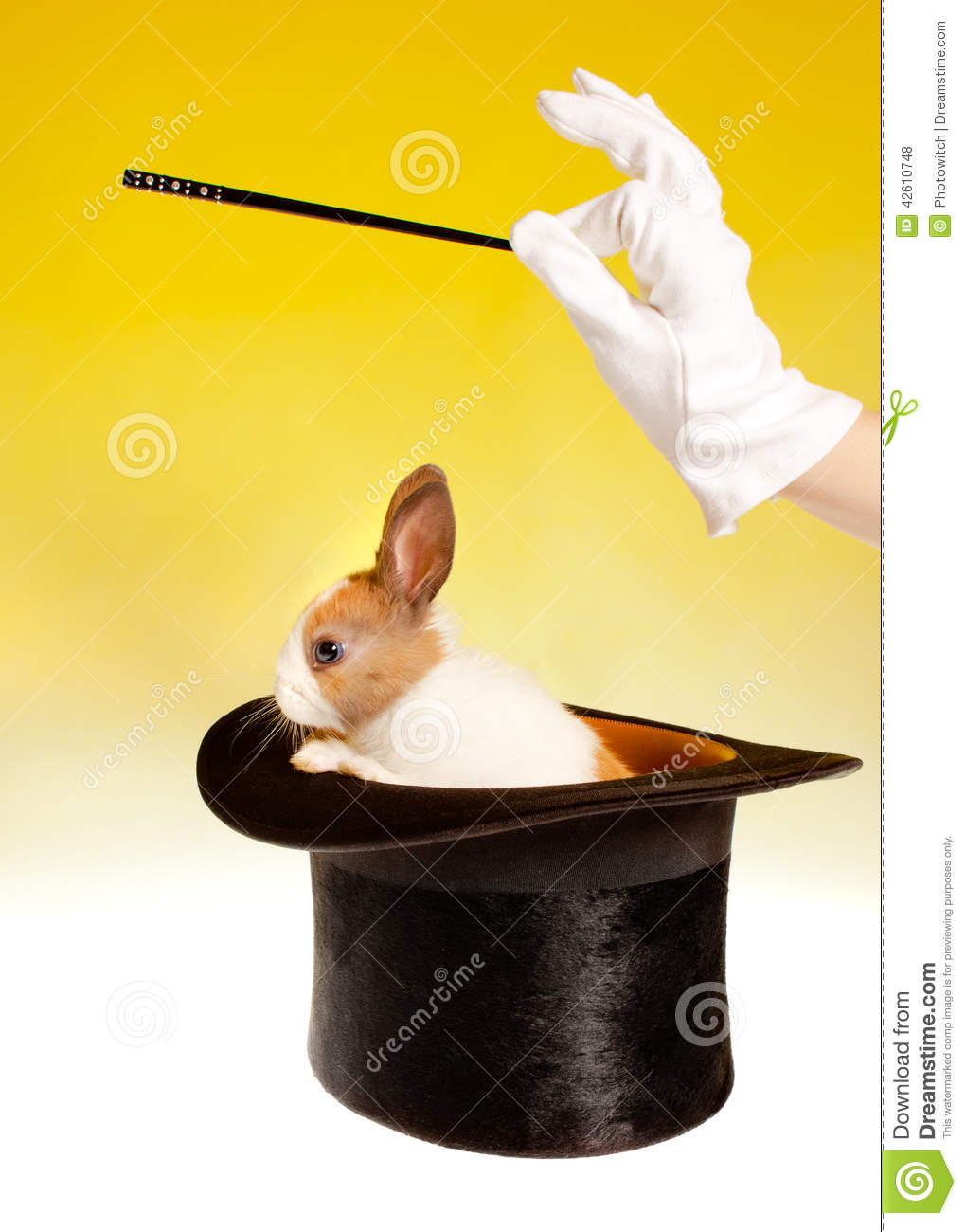 Magician And Rabbit Stock Photo - Image: 42610748