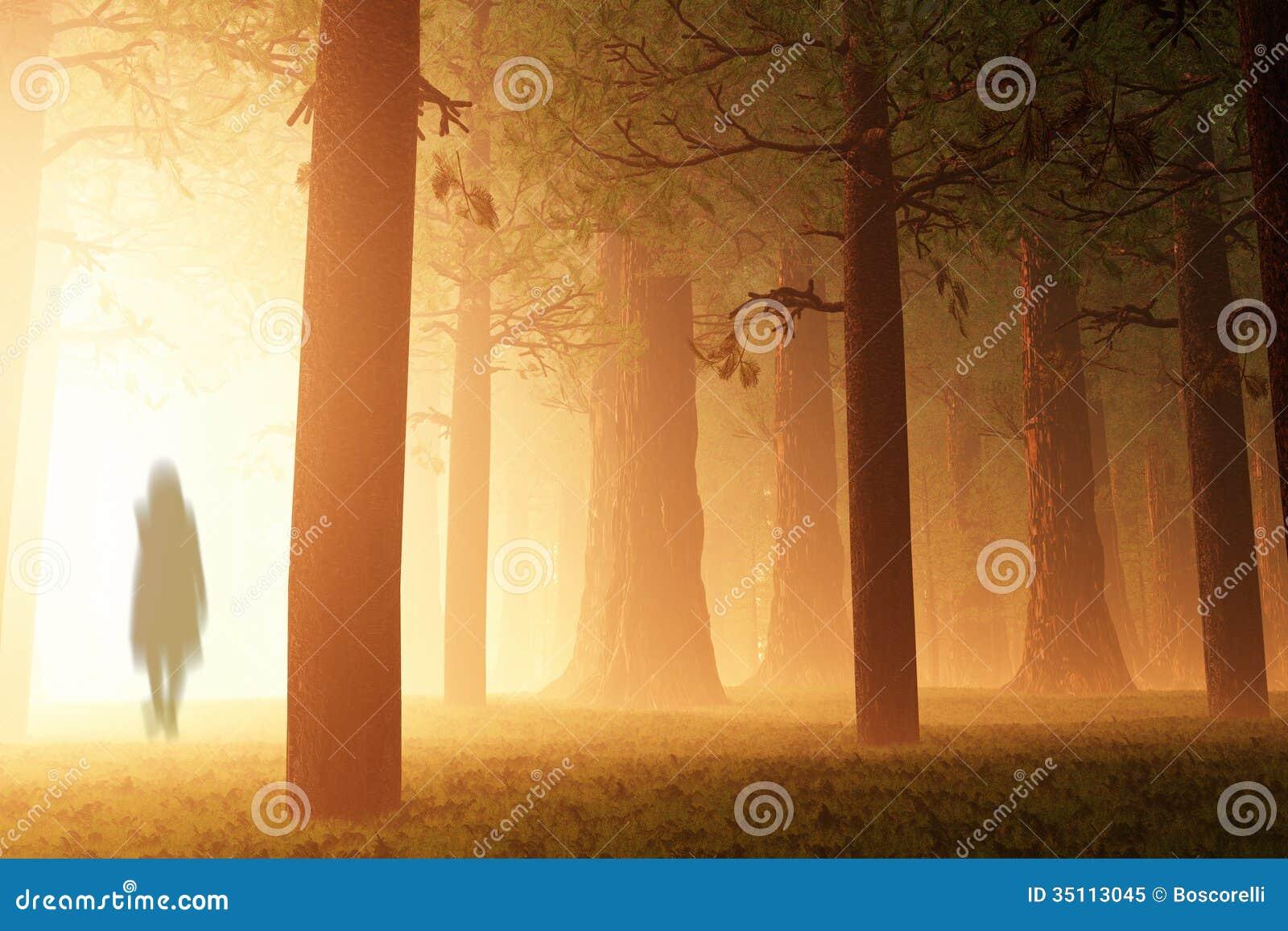 Magisch Forest Ghost
