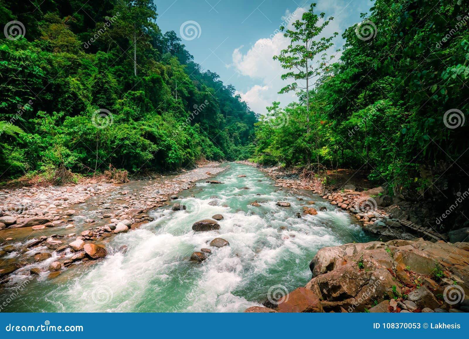 Hedendaags Magisch Landschap Van Regenwoud En Rivier Het Noorden Sumatra GJ-31