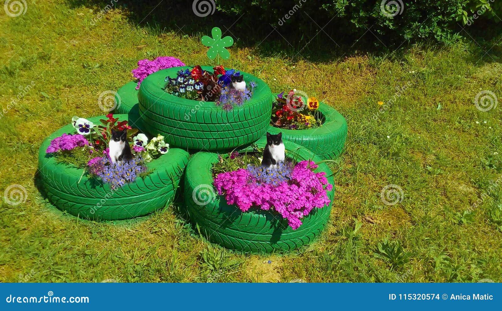 De Magische Tuin : Magische tuin met kattenbeschermers stock foto afbeelding