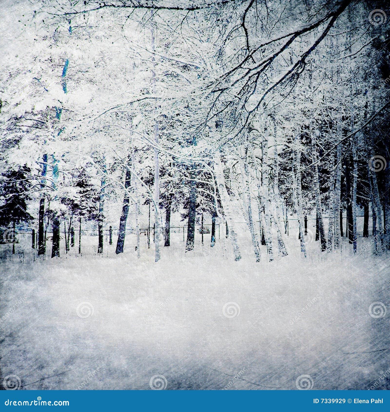 Magischer Winterhintergrund mit Wald