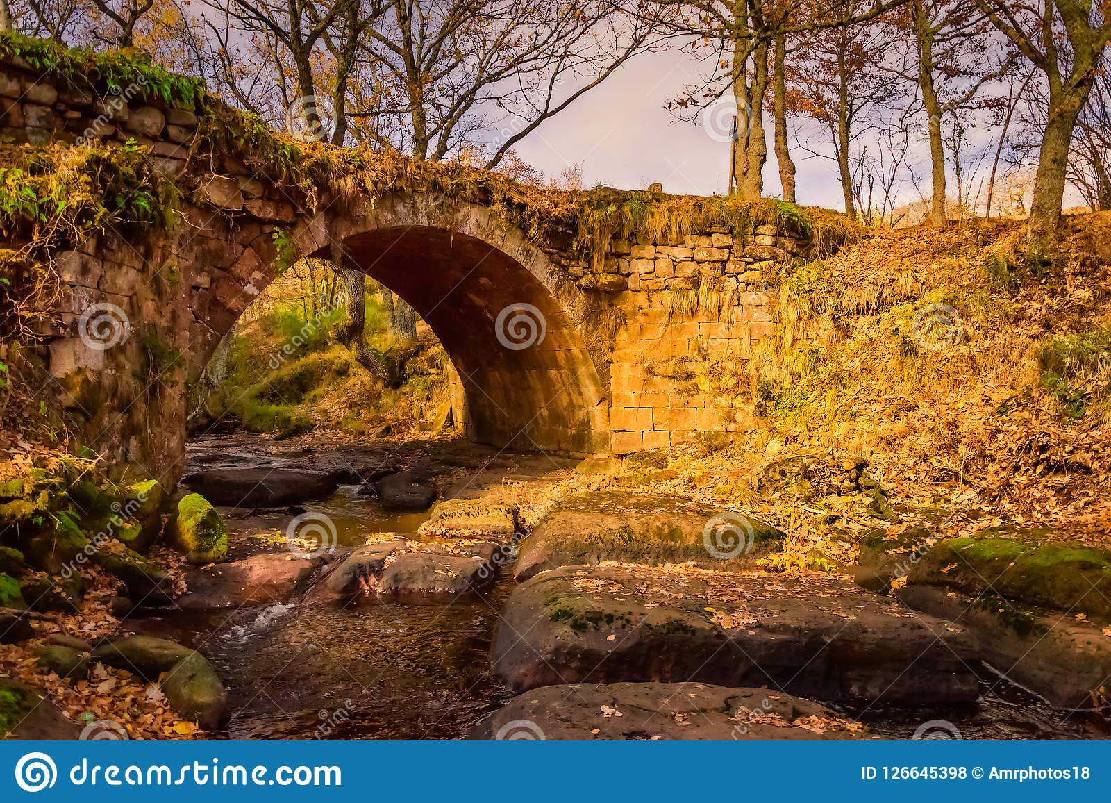 Magisk bro för höstlandskap i Aguilar de Campoo