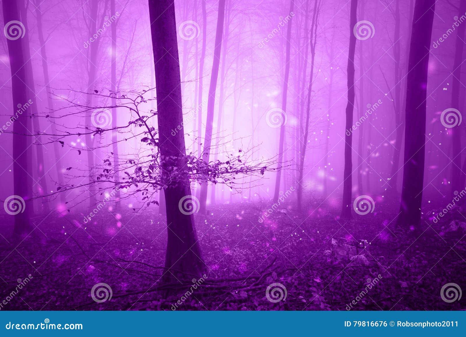 Magisk rosa skogsaga med eldflugor