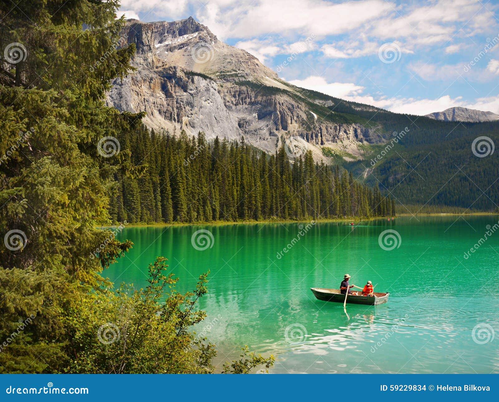 Magiska gröna färger av landskapet